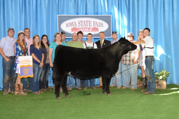 Shelby : Weis ResSupremeHeifer